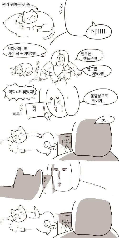 고양이_귀여운짓_찍는_만화.jpg